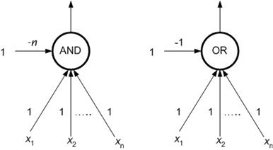 Classical Models of Neural Networks